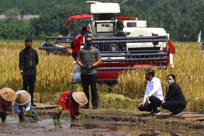 Ikut Panen Raya di Malang, Puan Maharani Minta Pemerintah Fokus Selesaikan Masalah Pertanian